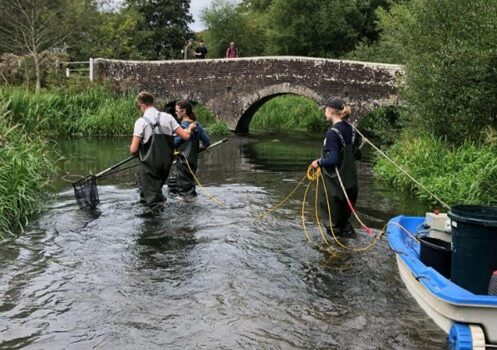 GWCT Annual Salmonid and Trout Parr Tagging 2021